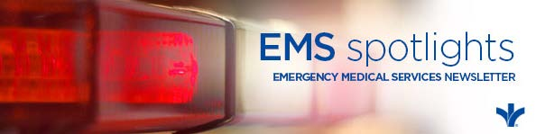 BSEM-069 EMS Summer E-Newsletter